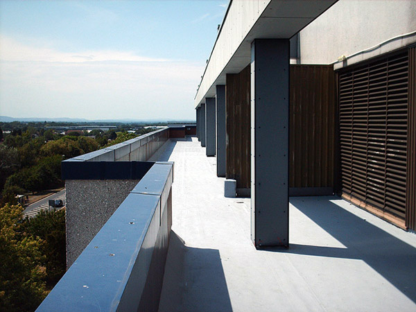 FLAT ROOF REPAIR IN LONDON AND THE SOUTH EAST 1